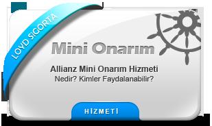 mini_onarim